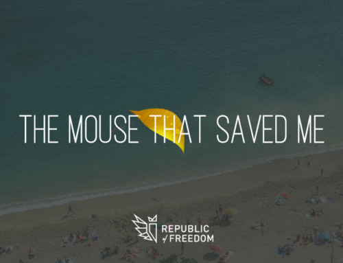THE MOUSE THAT SAVED ME